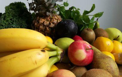 Mistä eväät osaavaan ravitsemusohjaukseen?